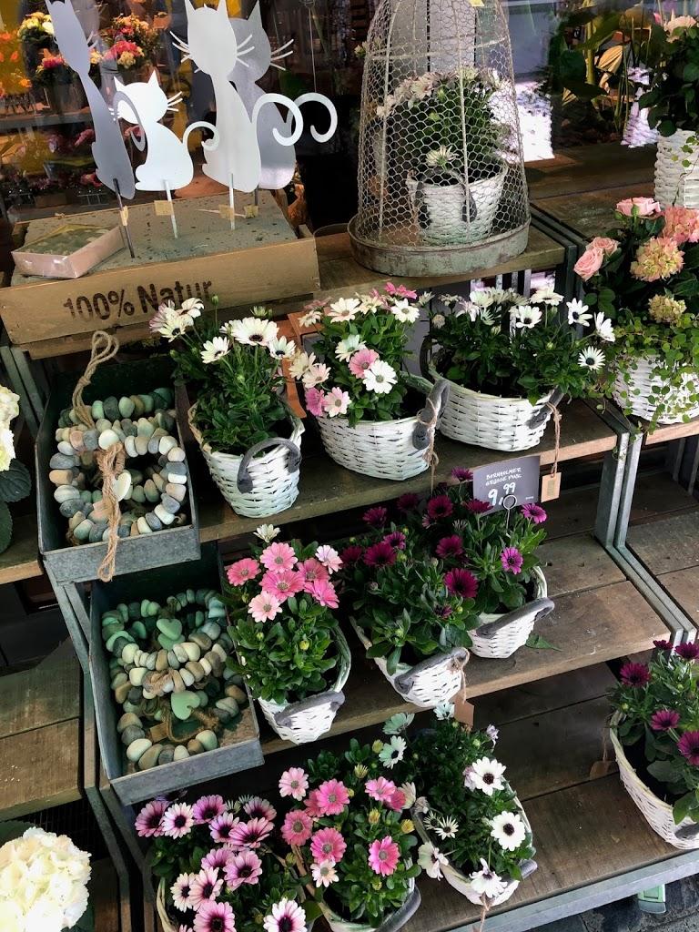 Raus aus dem Winterbluse & mit Vollgas Richtung Frühling